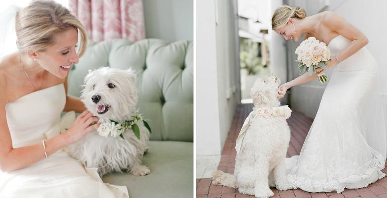 sposa con cane al matrimonio