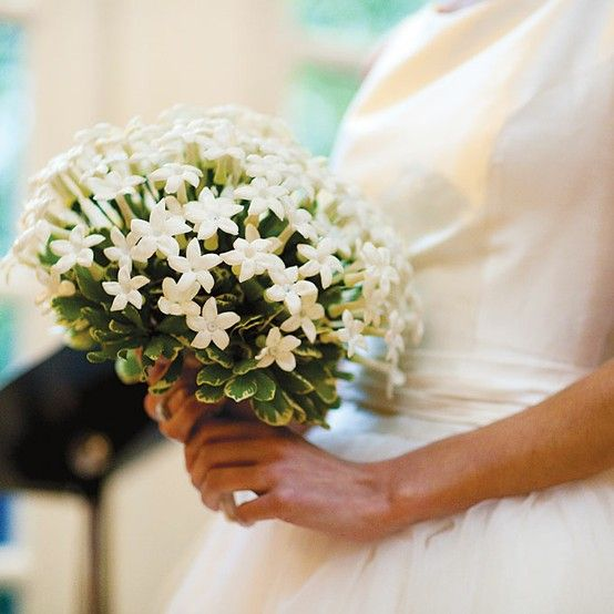 bouquet da sposa di  gelsomini